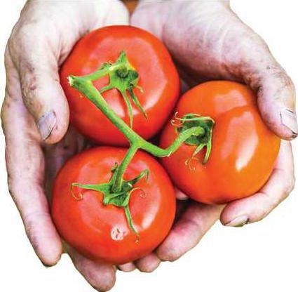 Tomato-hands