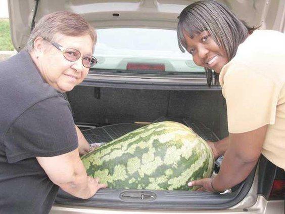 0928Grew-Watermelon SJ
