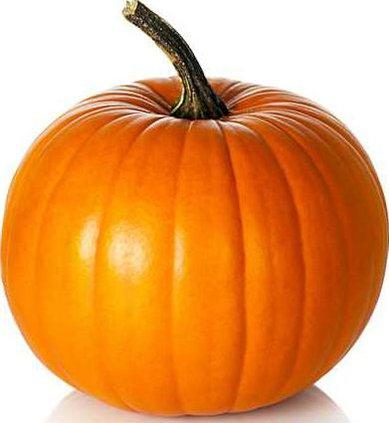 1010Pumpkin