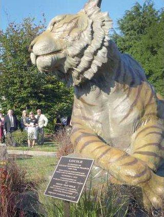 0808ASK.tiger