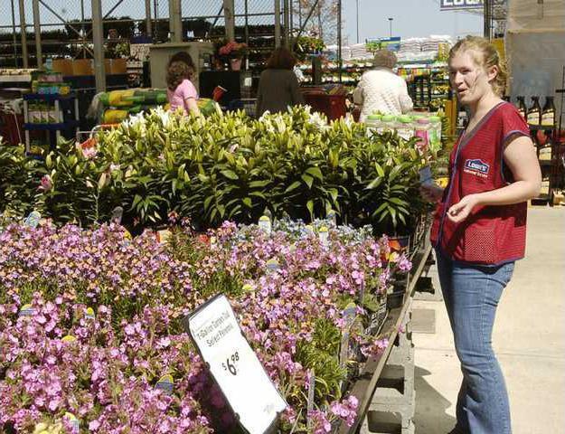 When Garden Grows The Money Flows Gainesville Times