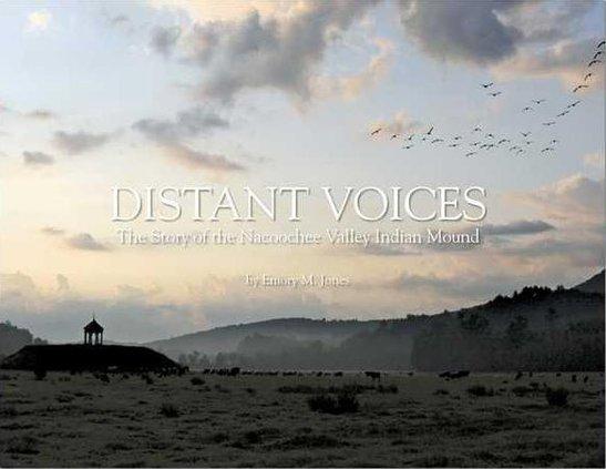1031-GO-Distant-Voices