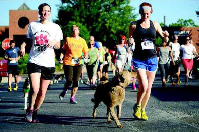 0609Mutt Strut Runners