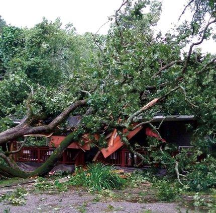 10072017 Irma1.jpg