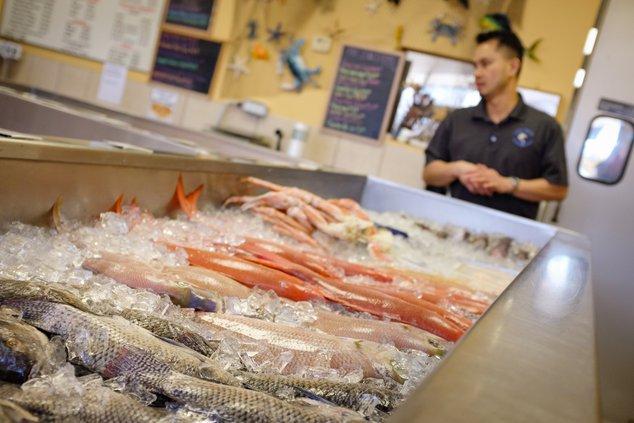 03132019 FISH 1.jpg