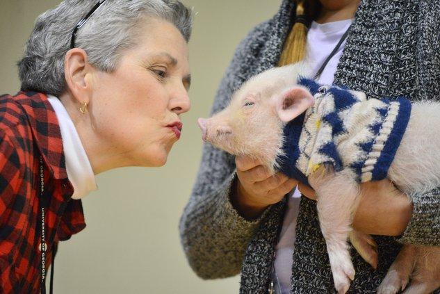 11222019 PIG 4.jpg
