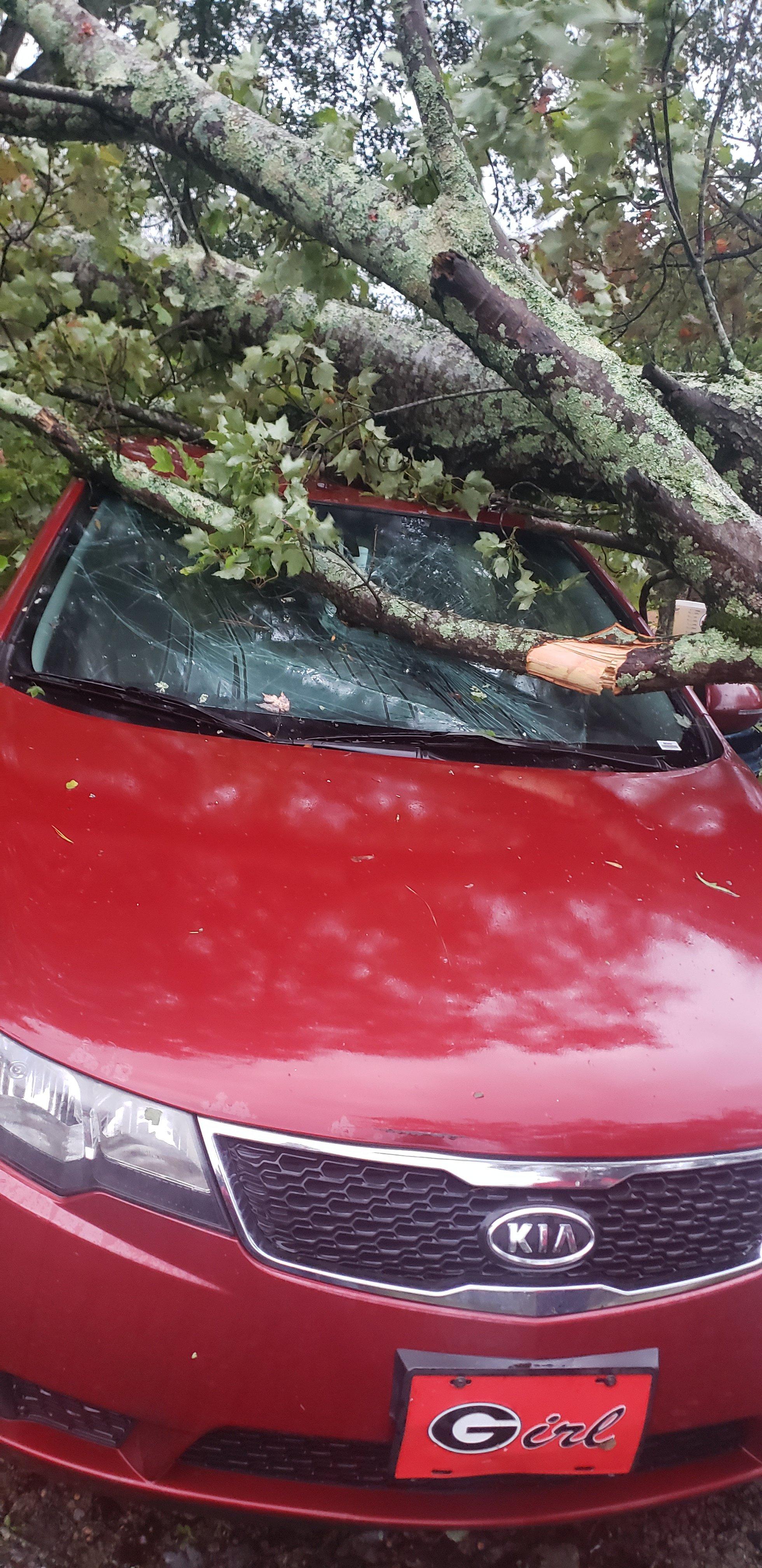 Car damaged 1.jpg