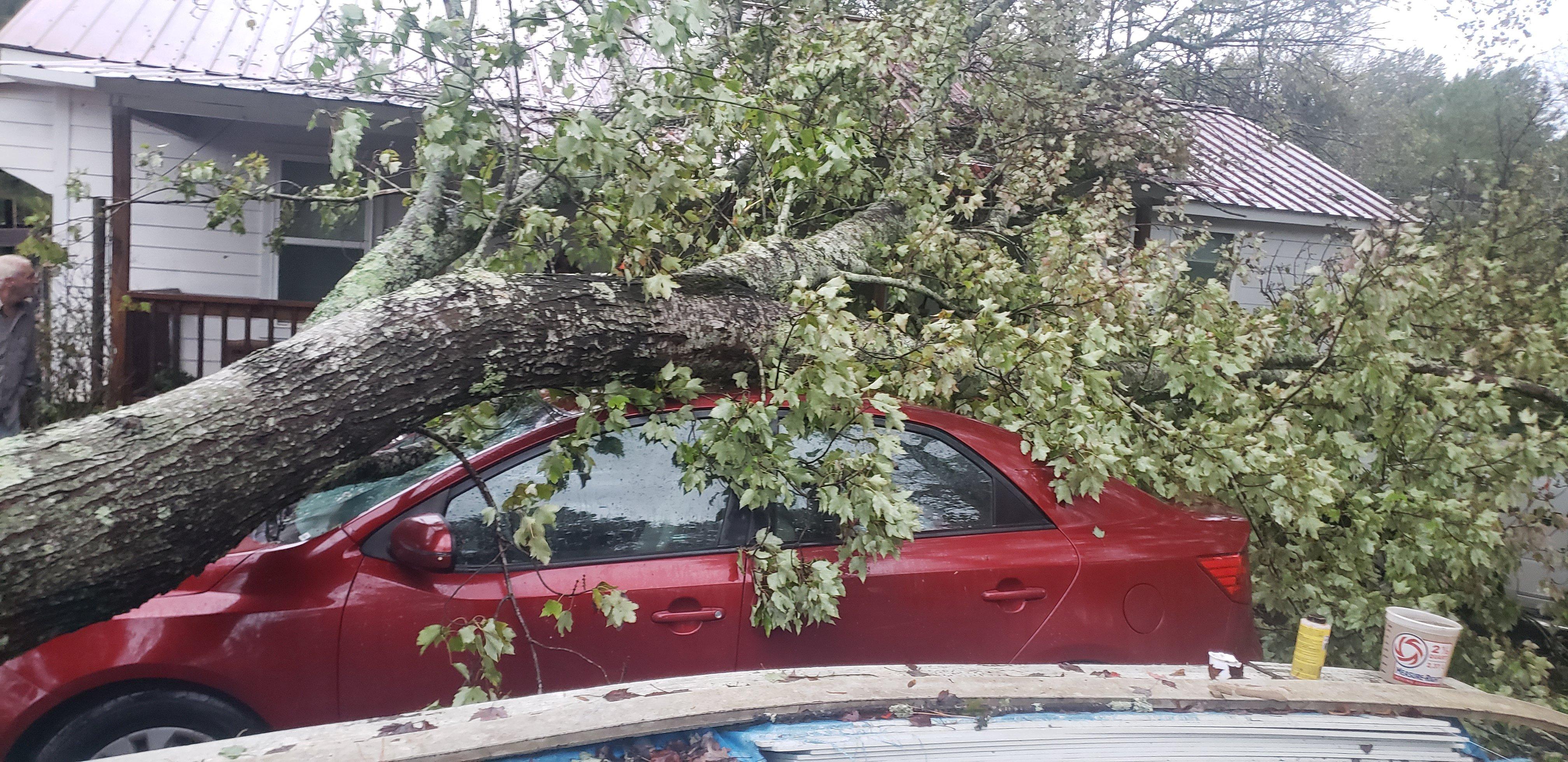 Car damaged 2.jpg