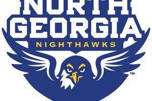 North Georgia logo