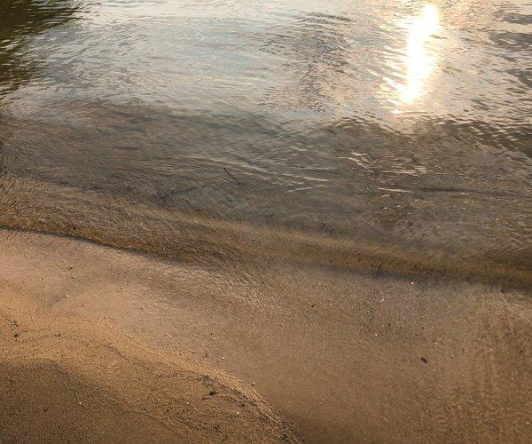 Lake Lanier beach 2021.jpg